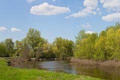Liten flod med en nivå för högt vatten på en solig dag Royaltyfri Fotografi
