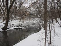 Liten flod med träd i vinter Fotografering för Bildbyråer