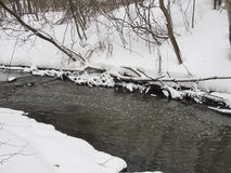 Liten flod med träd i vinter Arkivbilder