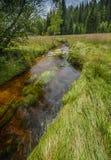 Liten flod, nationalpark Sumava Royaltyfri Foto