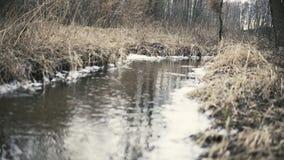 Liten flod på slutet av vintern