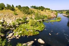 liten flod ros Arkivbild