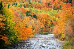 Liten flod som flödar till och med Vermont royaltyfri bild