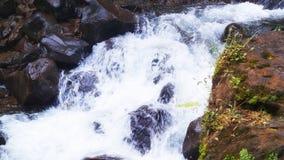 Liten flod under en vattenfall royaltyfria bilder