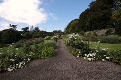 Liten foothpath i en trädgård mycket av blommor Royaltyfri Bild