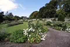 Liten foothpath i en trädgård mycket av blommor Arkivbild