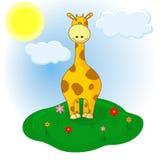 Liten giraff på ängen Royaltyfria Bilder
