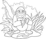 Liten gorilla Arkivfoton