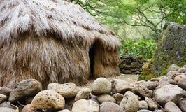Liten gräshydda i den Oahu Waimea dalen arkivfoton