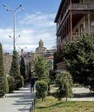 Liten grön gata i gamla Tbilisi i vår arkivfoton