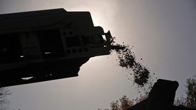 Liten grained sand och stenar som faller från transportbandet i morgonen Bearbeta för ny väg stock video