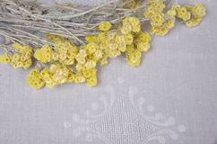 Liten guling blommar på tabellen Royaltyfria Foton