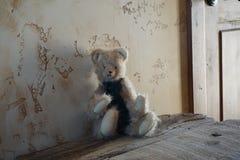 liten gullig björnleksak arkivbilder