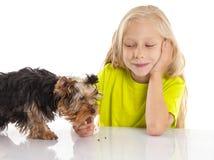 Liten gullig flicka som matar hennes hund arkivfoto