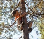 Liten gullig pojkeklättring på träd Royaltyfri Bild