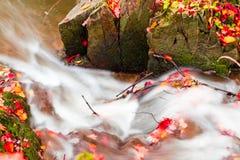 Liten härlig vattenfall på en mycket liten liten vik Fotografering för Bildbyråer