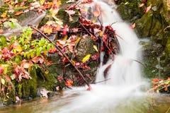 Liten härlig vattenfall på en mycket liten liten vik Royaltyfri Fotografi