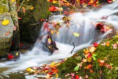 Liten härlig vattenfall på en mycket liten liten vik Royaltyfria Foton