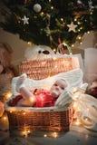 Liten halkning behandla som ett barn pojken med julkläder i korgjulgarnering och pråliga ljus runt om henne royaltyfri foto