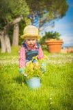 Liten hjälpreda på det gröna gräset i sommardag Royaltyfri Bild