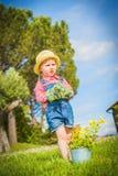 Liten hjälpreda på det gröna gräset i sommardag Royaltyfria Bilder