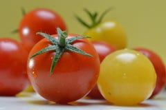 Liten körsbärsröd tomat Arkivfoto