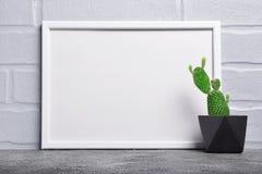 Liten kaktus i svart konkret blomkruka och modell av den vita ramen med kopieringsutrymme för affisch royaltyfria foton