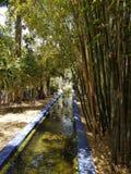 Liten kanal i den Majorelle trädgården, Marrakesh arkivbilder