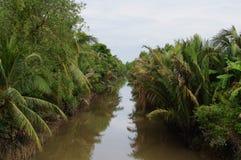 Liten kanal i den Mekong deltan Arkivfoton