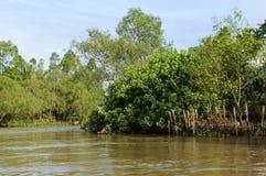 Liten kanal i den Mekong deltan fotografering för bildbyråer