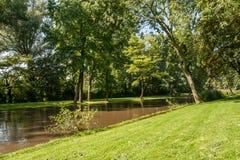 Liten kanal med gräskusten Royaltyfri Fotografi