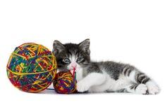 Liten kattunge med ett garnnystan Fotografering för Bildbyråer