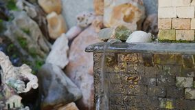 Liten konstgjord springbrunn med klart vatten arkivfilmer