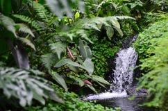 Liten konstgjord vattenfall royaltyfri foto
