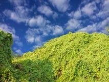 Liten kulle och blå himmel med moln royaltyfri fotografi