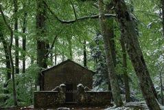 Liten kyrka i det snöig trät Royaltyfria Bilder