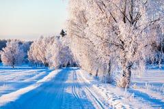 Liten landsväg i vinter Arkivbilder