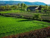 Liten lantgård i nord av Italien Arkivbild