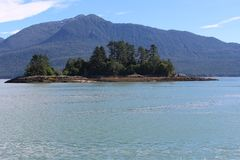 Liten lantlig ö för Deadman ` s i sommar nära Wrangell Alaska royaltyfria foton