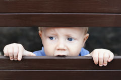 Liten ledsen pojke som ut ser till och med staketet royaltyfri foto