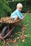Liten litet barn i trädgården Royaltyfri Fotografi