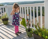 Liten litet barnflicka på trädäck som bevattnar tomater Arkivbild