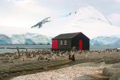 liten lockroy port för Antarktisstuga Arkivfoto