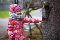 Liten lycklig flicka med handen som matar en ekorre i parkera Royaltyfri Fotografi