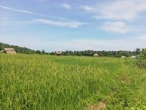 Liten Mangyan by i bergig del av Abra de Ilog, Mindoro royaltyfri fotografi