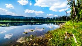 Liten McGillivray sjö, nära solmaxima i British Columbia, Kanada arkivfoto