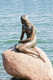 liten mermaid Royaltyfri Fotografi