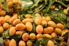 Liten mini- mango Thailand Royaltyfria Foton