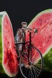 Liten modell av den retro cykeln nära den mogna vattenmelon arkivbilder