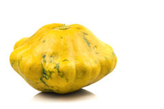 Liten mognad trädgård för gul squash Arkivfoto